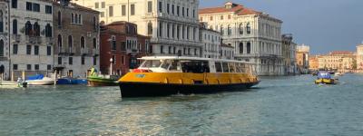 liuto_canal_grande_linea_1